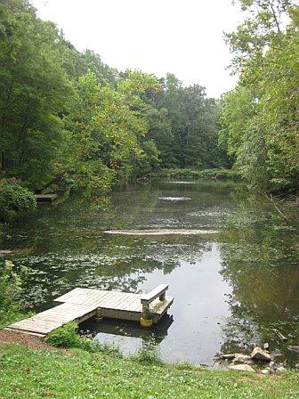 Pond-12238