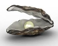Oyster_with_pearl_inside