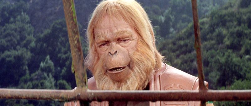 Large-planet-of-the-apes-blu-ray7