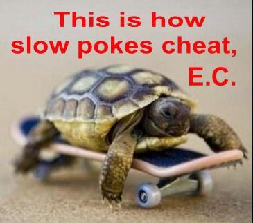 Turtle_cheats