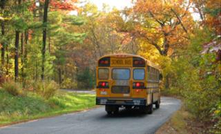 School-Bus-350w